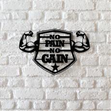 Tableau déco en acier No pain no gain